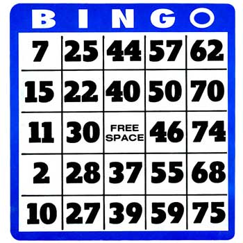 how to play bingo in a casino