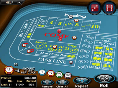 With a basic 'craps simulator' demo game, you can master the most important strategies to win